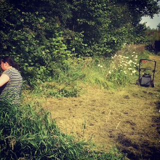 Lawnmower, mountfield