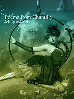 Poems from Chantilly: Microworlds Cover