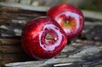 CHOLESTEROL: 6 aliments pour le chasser