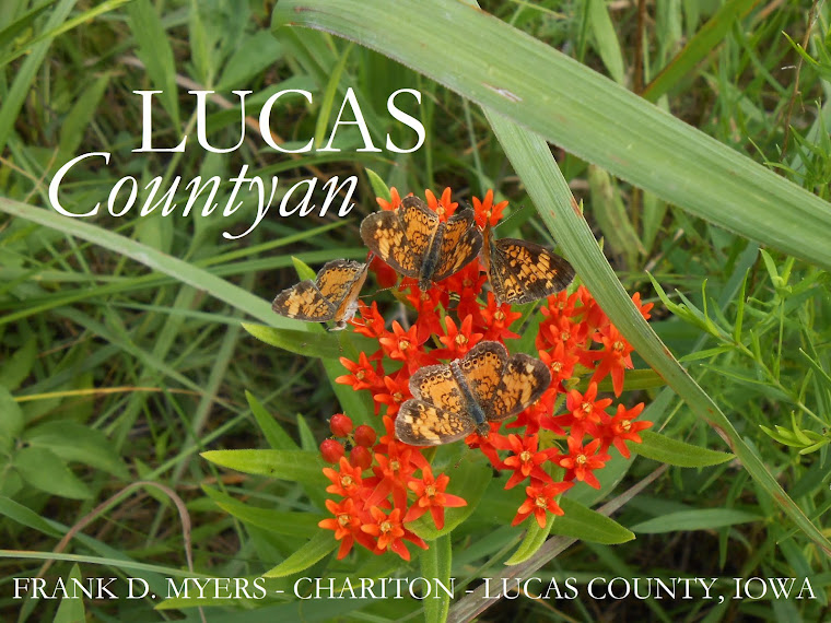 The Lucas Countyan