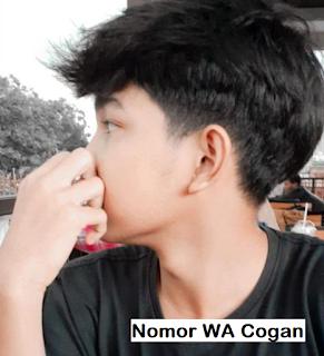 no wa cogan jomblo