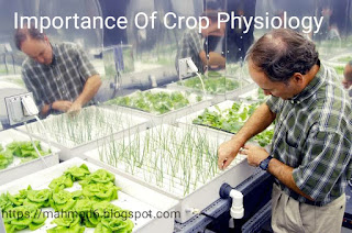 Importance of crop physiology,https://mahmad6.blogspot.com