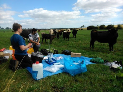 Dan Martin-Mallin and I preparing the samples with some curious onlookers!