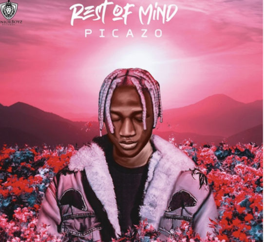Picazo-Rest of Mind-mp3-nupe360nobs