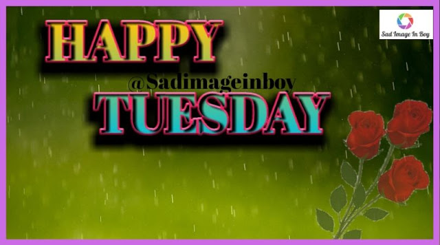 Happy Tuesday images   happy tuesday morning, tuesday morning greeting, tuesday morning quotes images
