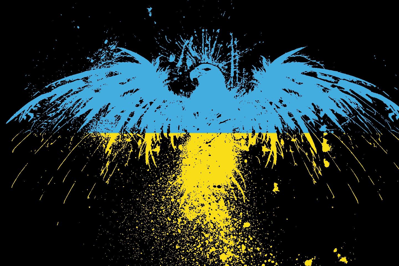 Ukraine Flag Pictures