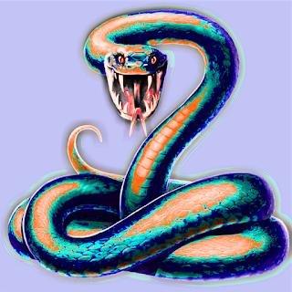 snake,snake video,cobra snake,types of snake,photo,big snake photo,big snake photos