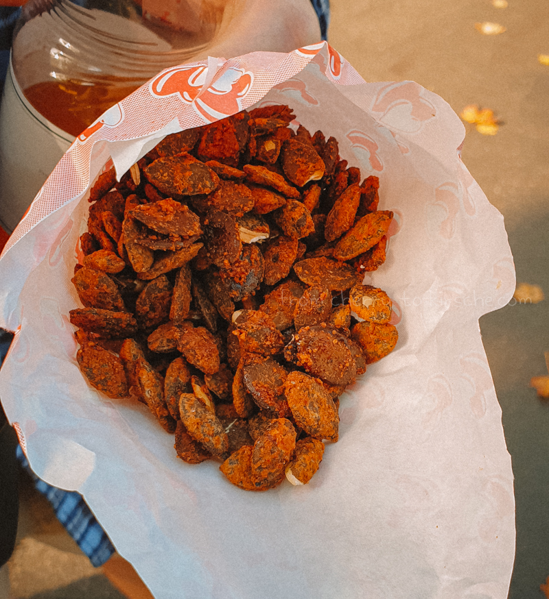 Ludwigsburg Pumpkin Festival Food