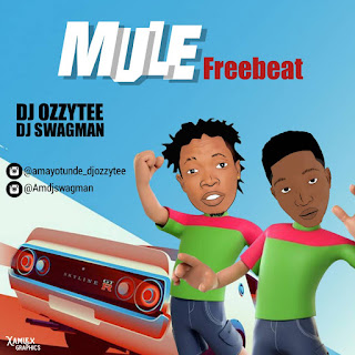 Download Freebeat DJ Ozzytee Ft DJ Swagman Mule Beat Mp3