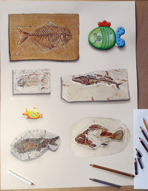 Planche de cinq fossiles et deux poissons en plastique coloré