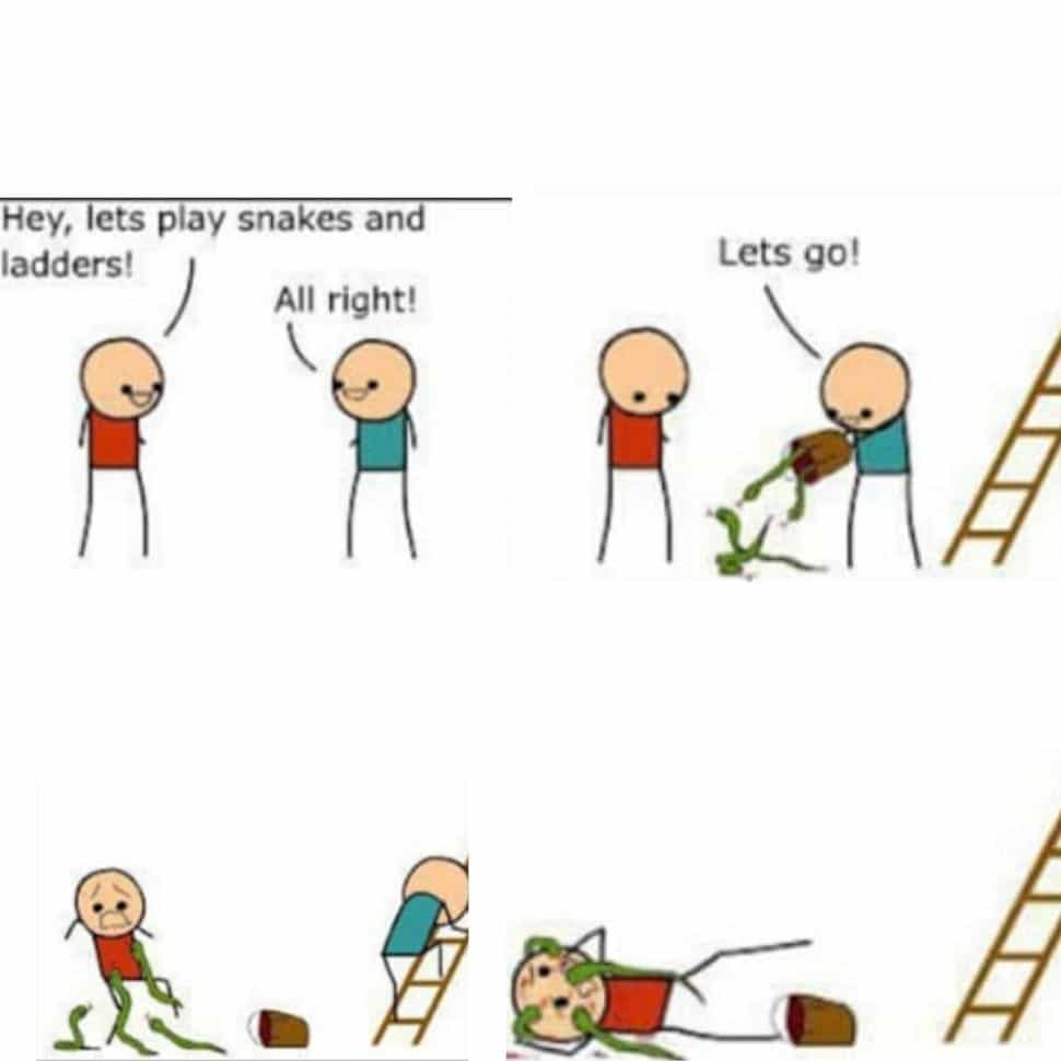when-you-friends-tell-you-to-play-snake-and-ladder-you-put-really-sancks-and-ladder