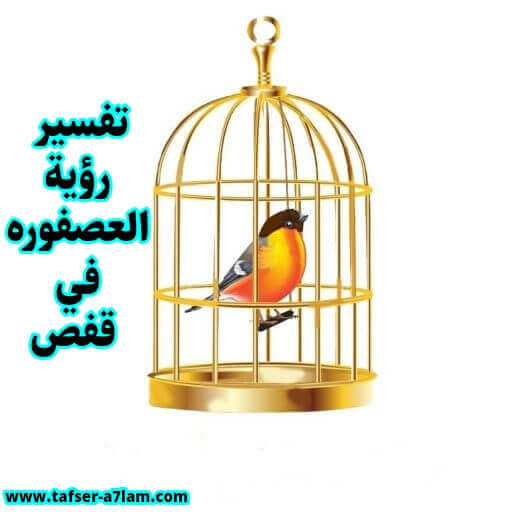 Interpretation of seeing the bird in a cage