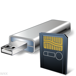 USB Flash Drives and Memory Cards.