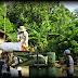 Kehidupan Masyarakat Desa  Di Tengah Pandemi Covid-19
