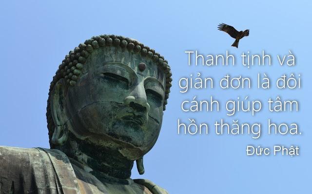21 lời răn dạy của Phật để sống hạnh phúc, tìm lại niềm an lạc vốn có trong mỗi chúng ta