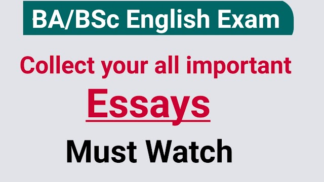 BA BSc English Important essays