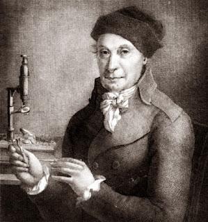 "Johann Hedwig: O ""Pai da Briologia"""