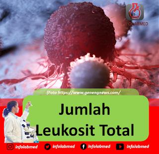 Jumlah Leukosit Total, wbc count, hitung sel leukosit lengkap, differential counting, hitung jenis leukosit