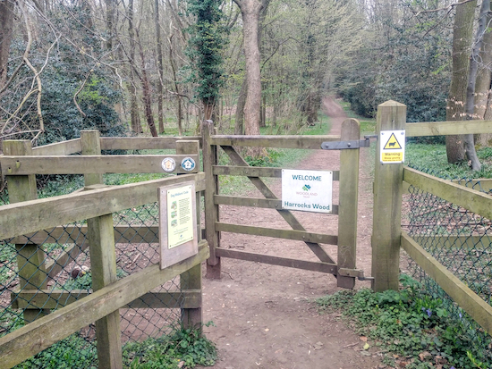 The entrance to Harrocks Wood - take the right fork once through the gate