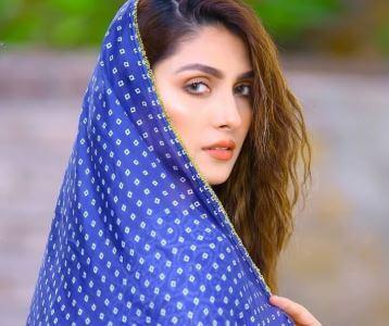 أفضل 10 أفكار تجارية من المنزل للنساء في باكستان