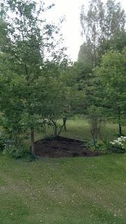 Puutarhan kesä kännykkäkuvin
