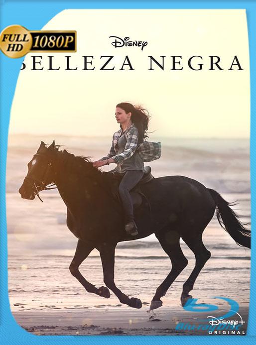 Belleza Negra (2020) 1080p WEB-DL Latino [Google Drive] Tomyly