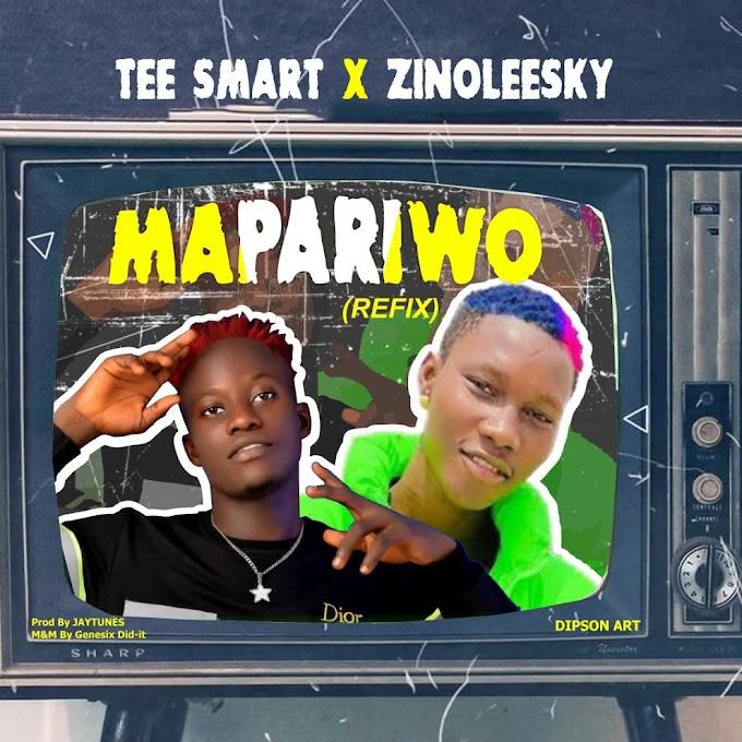 """Tee Smart X Zinoleesky – """"Mapariwo Refix"""""""