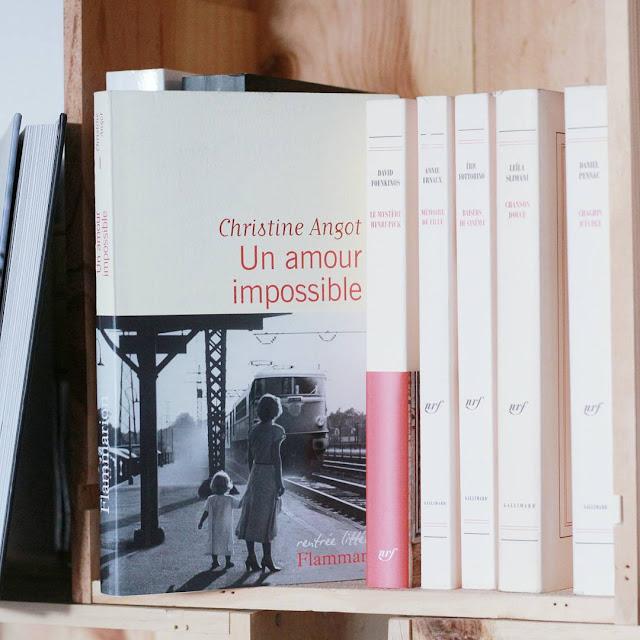 Un amour impossible en pdf de Christine Angot
