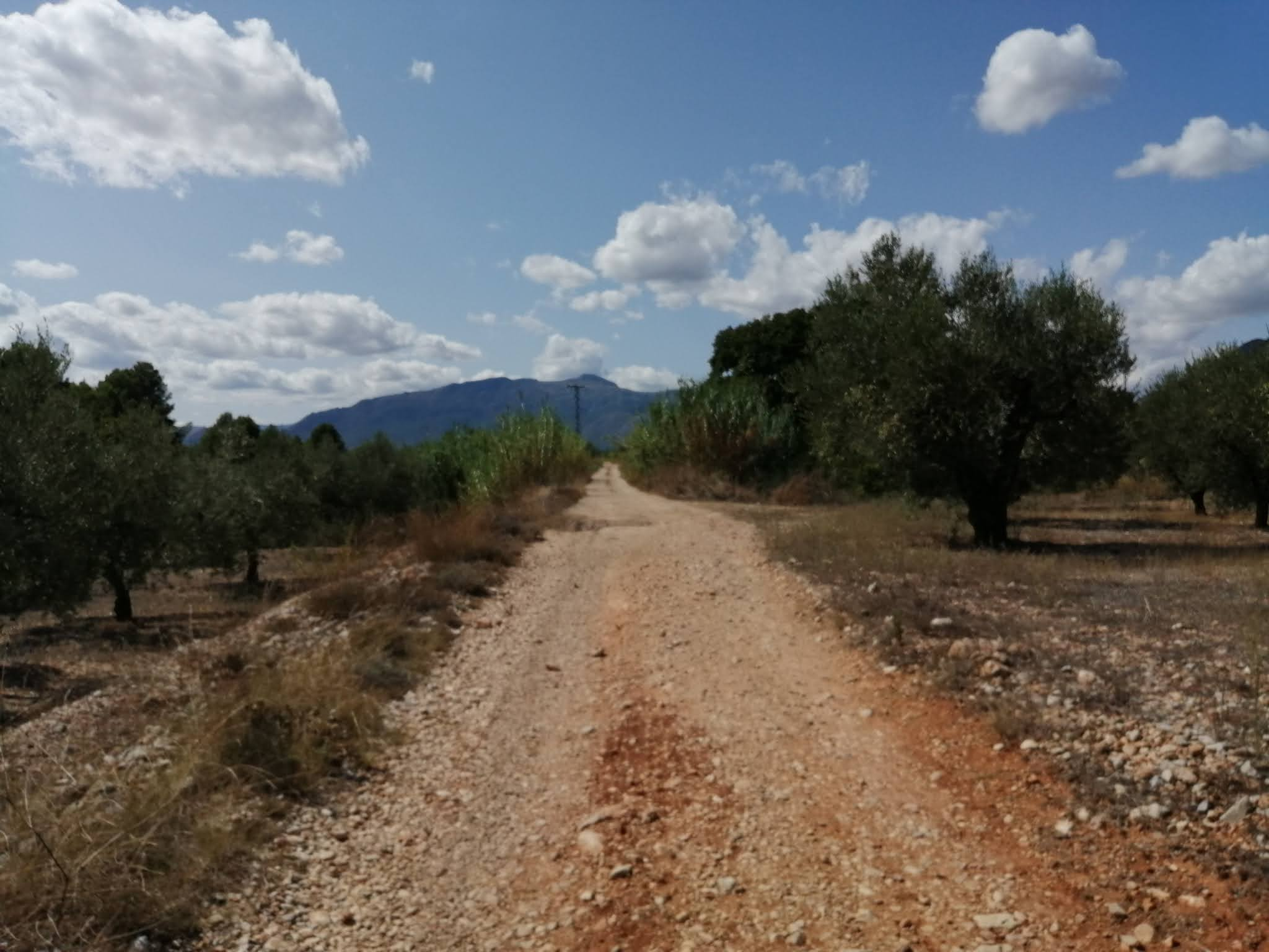 The Serpis Greenway direction Gaianes, Alicante