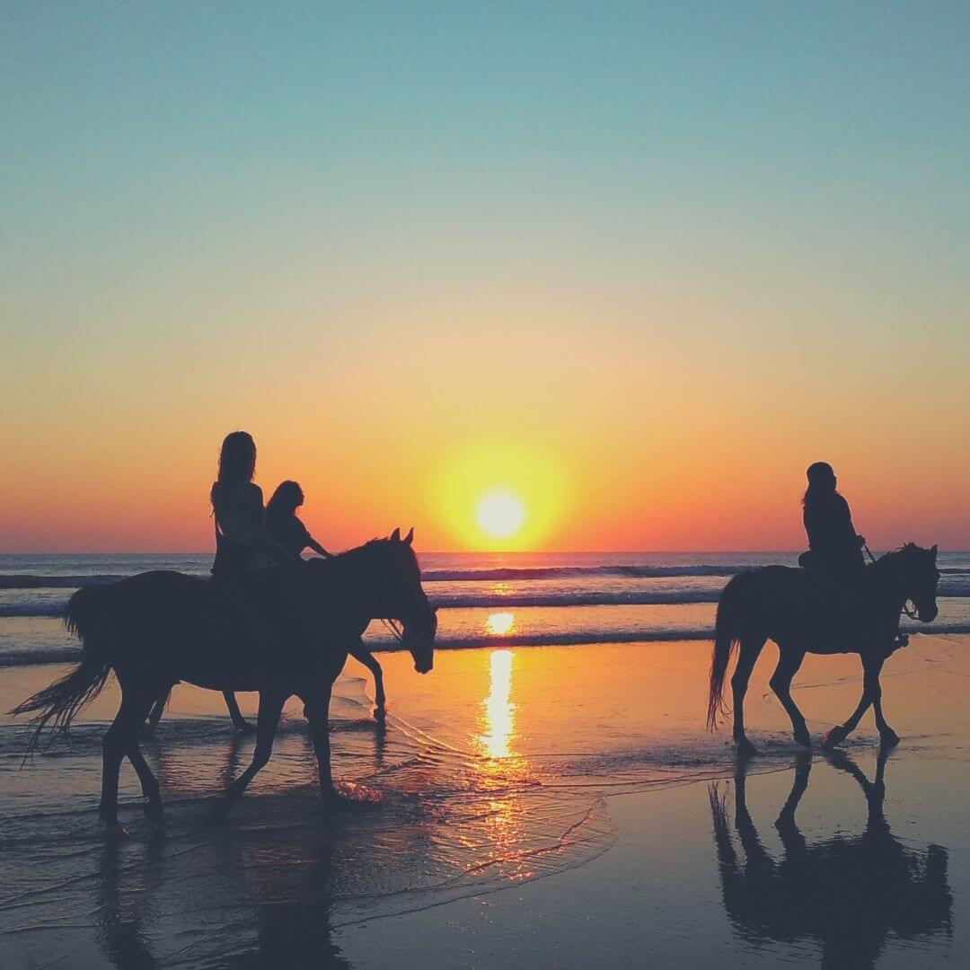 How Horse Riding Can Help You On Your Self Care Journey | Try out a new hobby and you could be helping yourself.