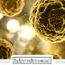 الخطوات الأولى للتدرب على مجال بيولوجيا الأورام والسرطان