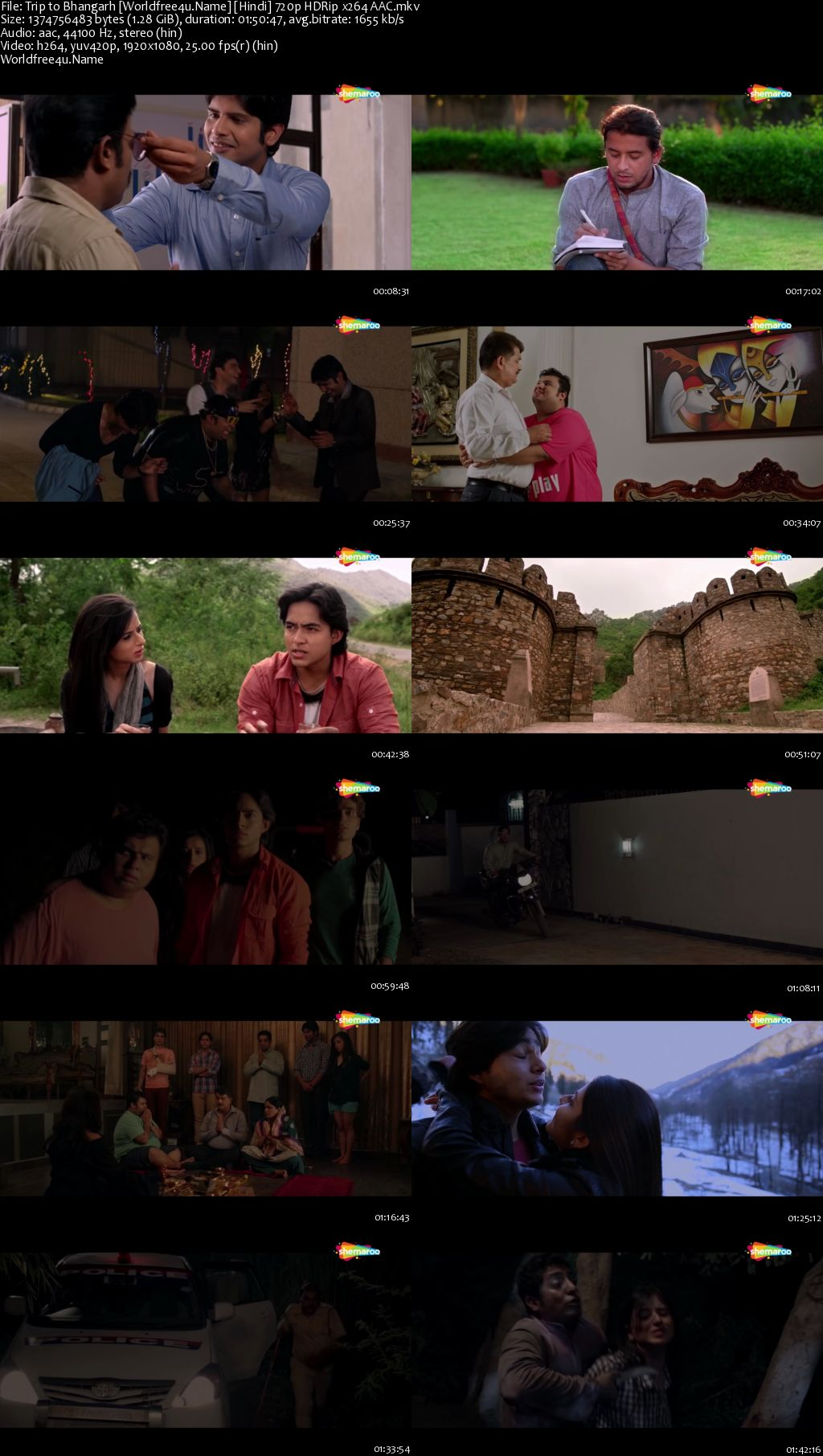 Trip to Bhangarh: Asia's Most Haunted Place 2014 Hindi HDRip 720p