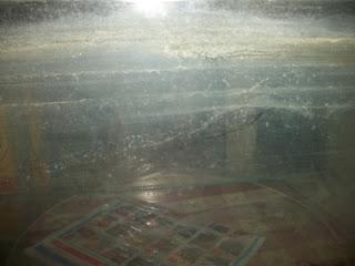 kerak putih aquarium