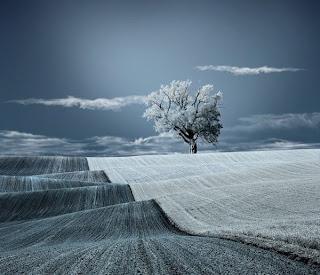 Fotografía de paisaje azul y blanco