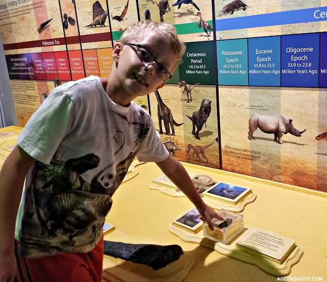 amazing dinosaurs exhibit review
