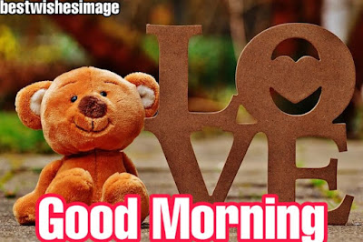 TEDDY BEAR GOOD MORNING IMAGES PICTURES WALLPAPER FREE DOWNLOAD