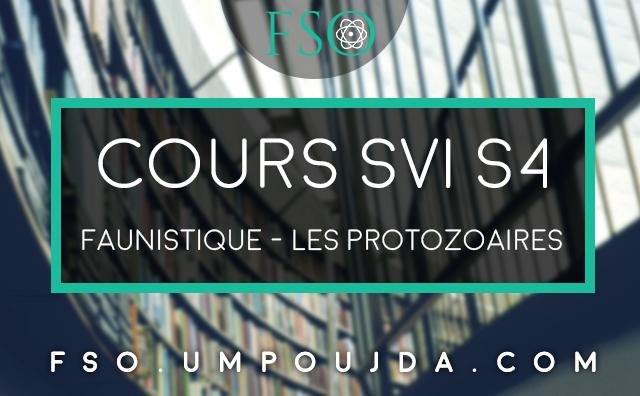 SVI S4 : Cours Faunistique - Les Protozoaires
