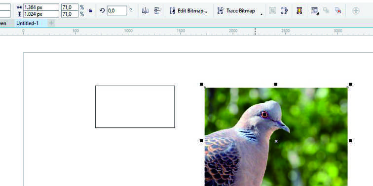 trik mengecilkan ukuran gambar blog 2