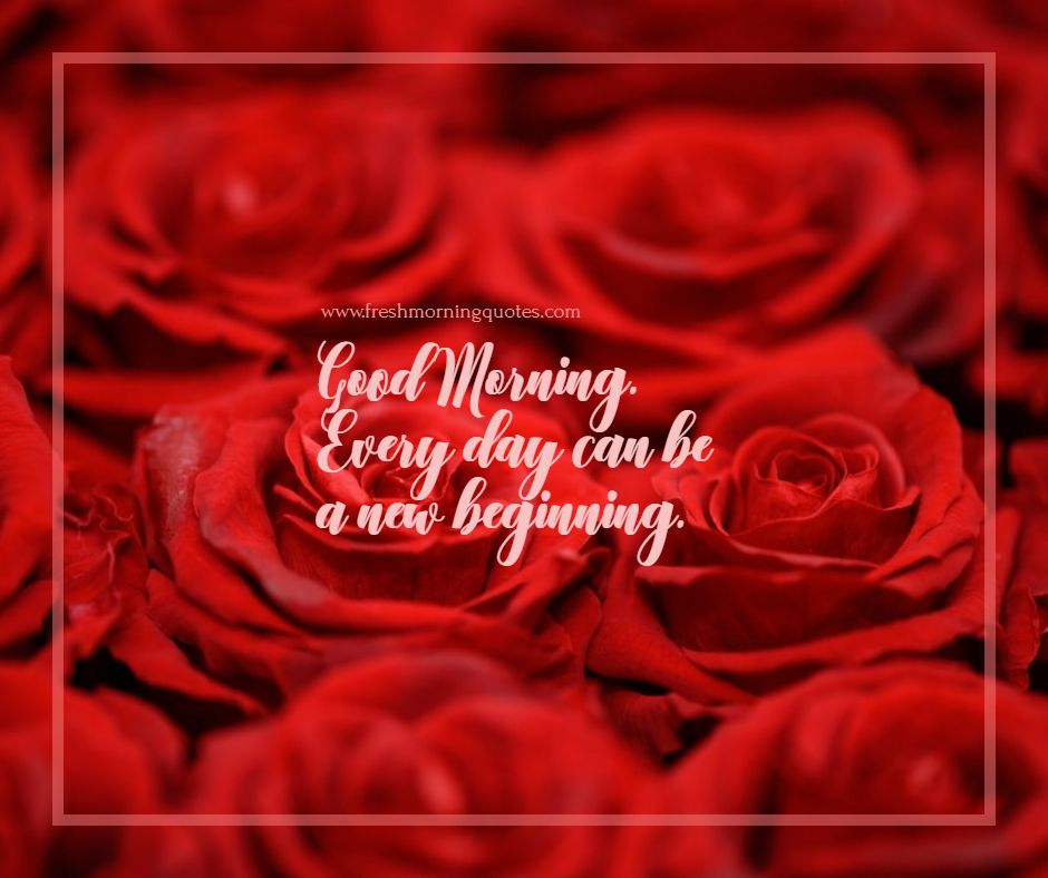 Good Morning Images With Red Rose And Tea