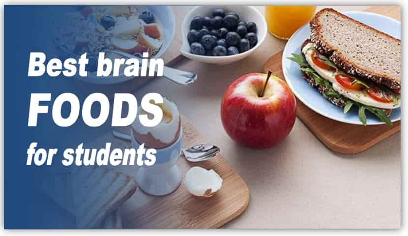 The best foods for the brain to increase study stamina