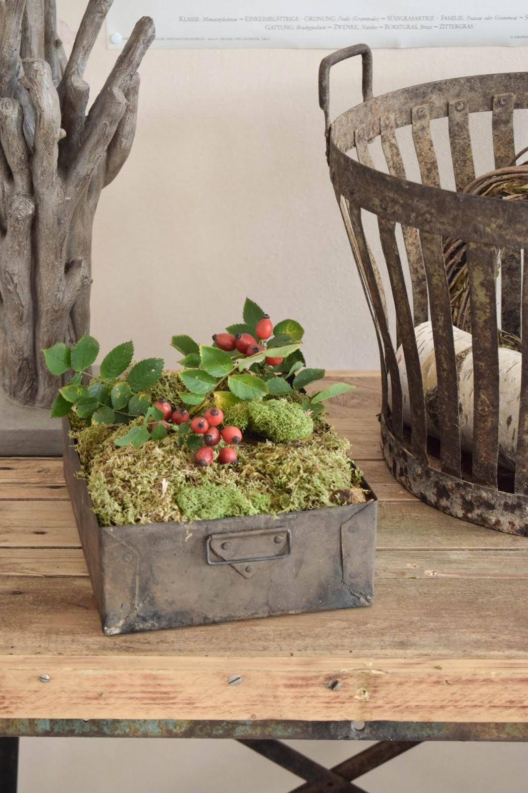 Herbstliche Deko für den Tisch, Sideboard und Konsole. Dekoidee mit Moos, Hagebutte 4