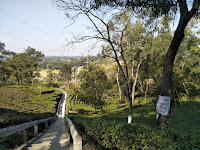 Stairway to tipam hill