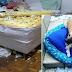 Vira-lata ganha a web em vídeo de destruição do quarto da dona: 'Adotei cachorro e cresceu dinossauro'
