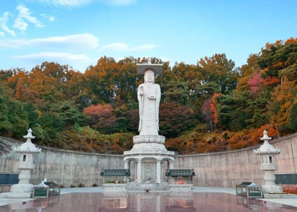 วัดบงอึนซา (Bongeunsa Temple: 봉은사) @ www.freepik.com
