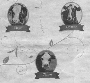 arbre généalogique des vaches