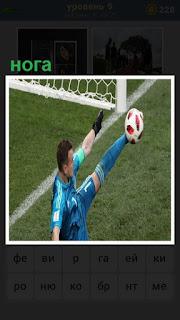 вратарь выбивает мяч около своих ворот ногой