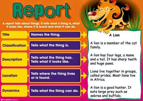 Pengertian generic structure dan contoh jenis teks report bahasa Inggris