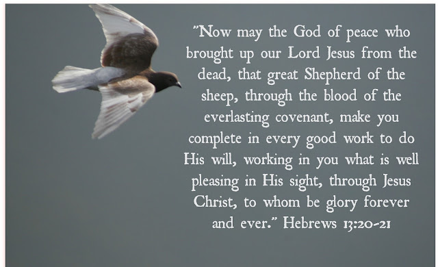 May the God of peace, ...that great Shepherd of the sheep, equip you with everything good for doing his will.