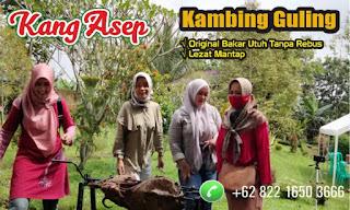 Ahlinya Kambing Guling Muda di Lembang Bandung, ahlinya kambing guling muda lembang, kambing guling muda di lembang, kambing guling muda lembang, kambing guling,