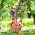 Fructele și legumele care au efect antidepresiv și țin oboseala la distanță!